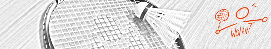Świętokrzyskie Towarzystwo Badmintonowe